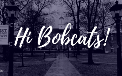 Welcome Bobcats to Protopia